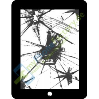 iPad mini 2 Touchscreen Frontglas Reparatur